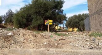 Terreno in vendita in contrada Olivastro 1