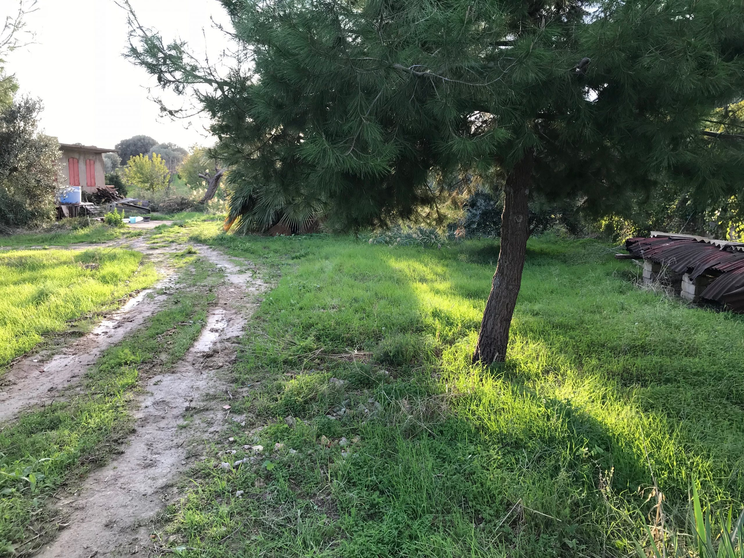 Casale / Cascina in vendita in contrada sant'oliva s.n.c., Licata